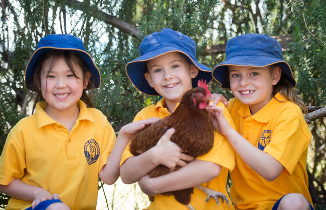 Students holding one of our school chickens.